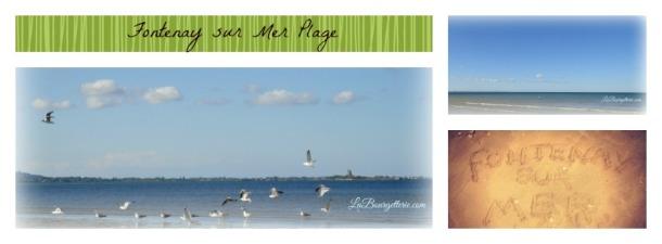 PicMonkey Collage bandeau plage(1)
